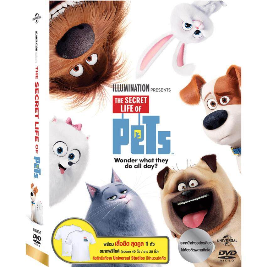 Media Play The Secret Life Of Pets + Plush Back Pack/เรื่องลับแก๊งขนฟู + กระเป๋าเป้ตุ๊กตาสุนัข DVD Collection image