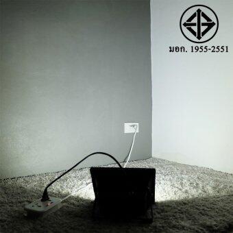 สปอตไลท์ 30W เสียบปลั้ก ใช้ได้เลย (220 V.) (แสง:ขาว)