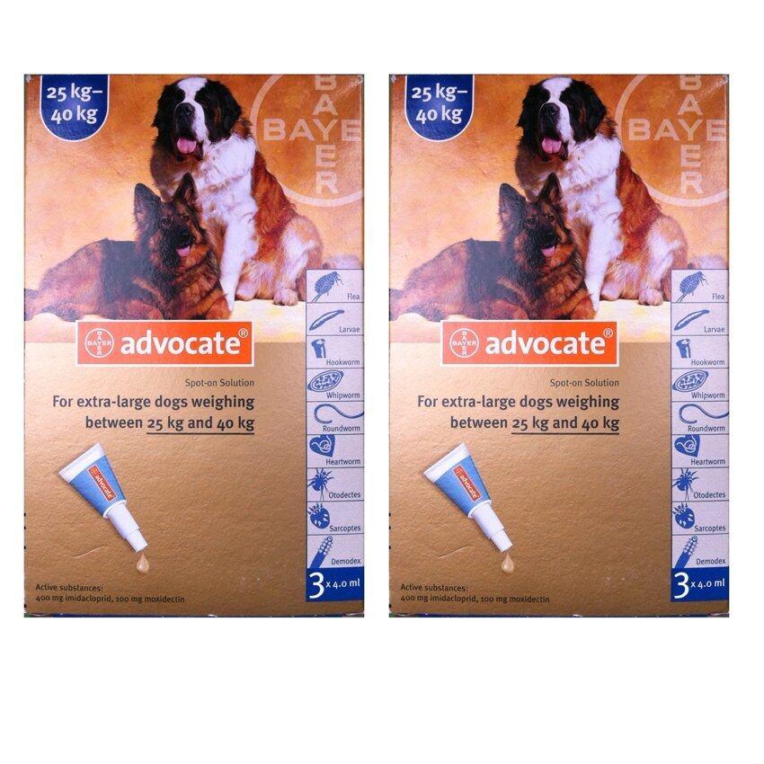 Bayer Advocate สำหรับสุนัข น้ำหนัก 25-40 กก X 6 หลอด (2กล่อง) สำหรับกำจัดเห็บหมัด (04909-6)