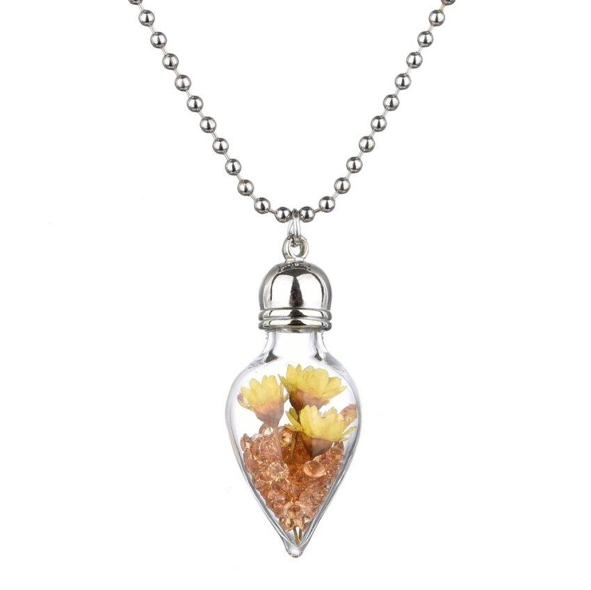 jiayiqi-glass-wish-bottle-big-dried-flower-choker-