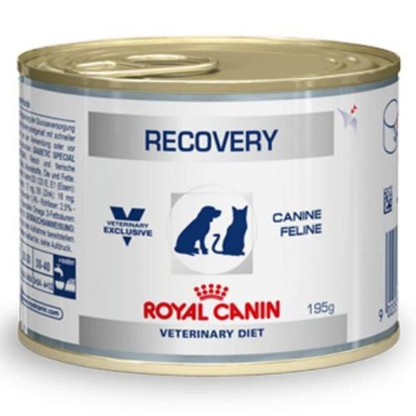 Royal Canin Recovery อาหารสำหรับสุนัขและแมว พักฟื้น 195g จำนวน 1 กระป๋อง