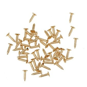 Harga 50pcs Acoustic Guitar Electric Guitar Guard Screw Electric BassPanel Screw(Gold) - intl