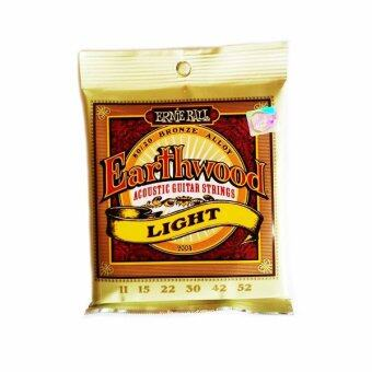Harga Ernie Ball Earthwood Light