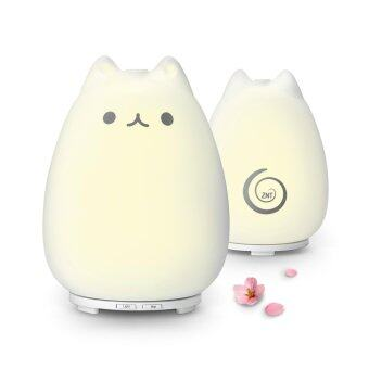 ZNT-E201 2 in 1 Adorable Ultrasonic Aroma Humidifier Desk LightWhite - intl