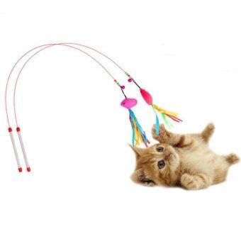 ไม้ตกแมว ของเล่นแมว จำนวน 2อัน