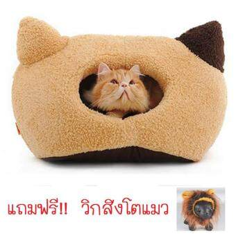 Cat Accessories ที่นอนแมว บ้านแมว รูปทรงหน้าแมว แถมฟรีวิกสิงโตแมวคละสี