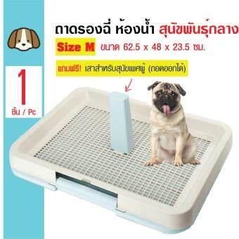 Dog Toilet ห้องน้ำสุนัข ถาดฝึกฉี่สุนัข พร้อมเสาถอดออกได้ สำหรับสุนัขพันธุ์กลาง Size M ขนาด 62.5x48x23.5 ซม.