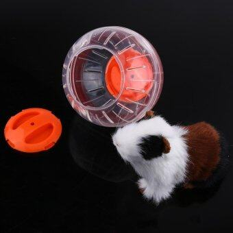 Harga 12cm Plastic Small Pet Hamster Gerbil Toy Running Activity Exercise Ball (Orange) - intl