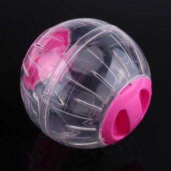 Harga 12cm Fashion Plastic Small Pet Hamster Toy Activity Exercise Ball(Pink) - intl