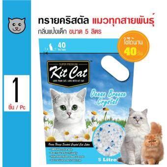 รีวิว Kit Cat ทรายแมวคริสตัล กลิ่นแป้งเด็ก ใช้ได้นานถึง 40 วันสำหรับแมวทุกวัย ขนาด 5 ลิตร