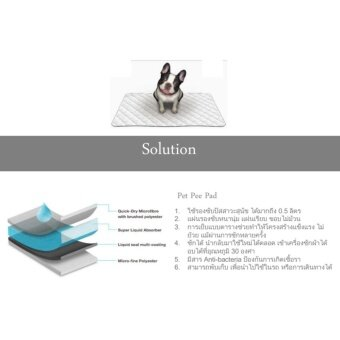 Pet Pee Pad แผ่นรองซับชนิดซักได้ แผ่นรองฉี่สุนัข แผ่นอนามัยสัตว์เลี้ยง สำหรับสุนัข Size M ขนาด 40x60 ซม. (image 1)