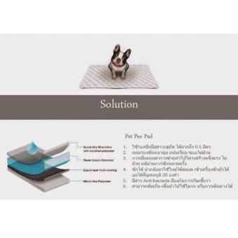 Pet Pee Pad แผ่นรองซับฉี่สุนัขแบบซักได้ไซส์ XL (60 x 90 cm) - 3