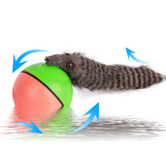 Harga Funny Alive Dog Cat Animal Weasel Jumping Moving Rolling Motor Ball Pet Toy