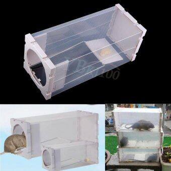 Harga Reusable Humane Rat Trap Cage Live Animal Pest Rodent Mice Mouse Control Bait Catch - intl