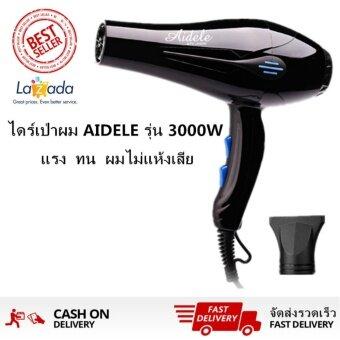 ราคา Fantasy Professional Hair Dryer ไดร์เป่าผม 3000 วัตต์ รุ่น ถนอมเส้นผม(สีดำ)