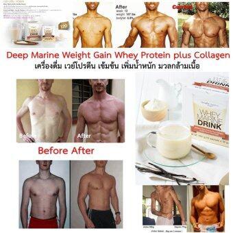 2560 Giffarine Deep Marine Weight Gain Whey Protein plus Collagen เวย์ โปรตีน มารีน ดริ้งก์ ผสมคอลลาเจน กลิ่นวนิลา เครื่องดื่ม เวย์โปรตีน เข้มข้น เพิ่ม น้ำหนัก กล้ามเนื้อ 15ซอง x 30 กรัม