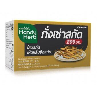 HandyHerb Cordycep แฮนดี้เฮิร์บ ถั่งเช่าสกัด 299 mg (24ซอง / 48แคปซูล/กล่อง)