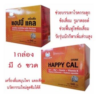 แฮปปี้ แคลซ์ Pleased Cal Consume ช่วยในการบรรเทาโรคกระดูก โรครูมาตอยด์ และดูแลเสริมสร้างกระดูกแข็งแรง 1 Packed (1 Packed 6 ขวด)