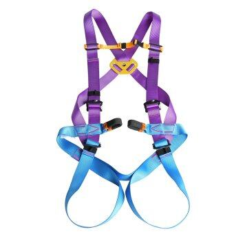 Harga MagiDeal Adjustable Full Body Rock Climbing Rappelling Safety Harness Equip Purple - intl