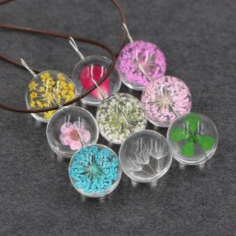 2016 1Pc Dandelion Fairy Seed Glass Orb Pendant Necklace Brown Leather Rope chain Men Women Necklace (Color: 8 colors)-Blue - intl
