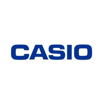 Casio Standard นาฬิกาข้อมือสำหรับผู้หญิง รุ่น A159WA-N1DF (สีเงิน) ลาซาด้า