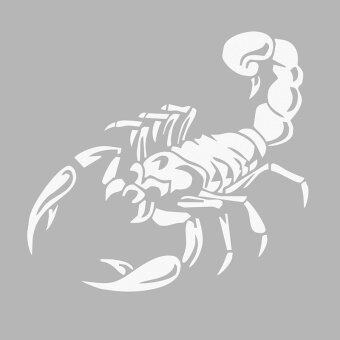 Harga Cocotina Cool 3D Scorpion Car Exterior Decor Sticker Auto Styling Decal DIY 30cm – White