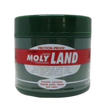 MOLYLAND จารบีทนความร้อน S2 0.5ปอนด์