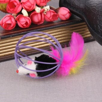 PentaQ 5Pcs Pet Cat Toy Mouse Feather Ball - intl